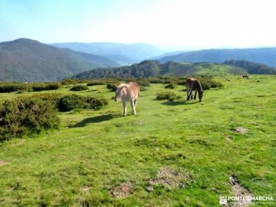 Selva Irati-Pirineo Navarro-Puente del Pilar;pantalones de montaña lugares para visitar en madrid p
